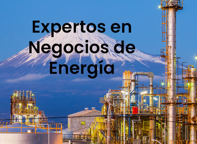 Energy Business Experts Spanish